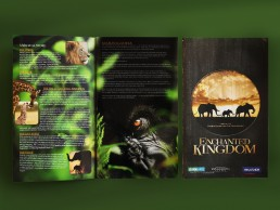 Enchanted Kingdom catalogue design for BBC