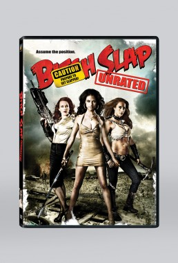 DVD packaging design for BITCH SLAP