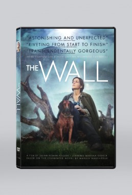 DVD packaging design for THE WALL