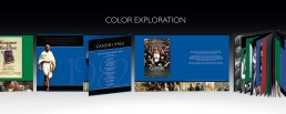 Color and Design exploration for Sony / Columbia Pictures Box Set